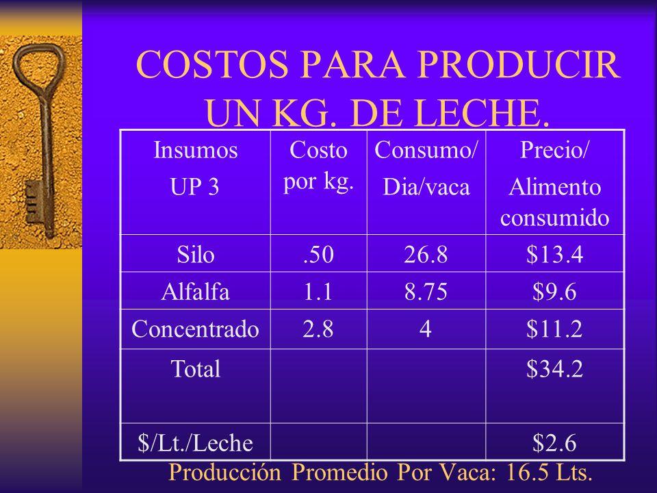 COSTOS PARA PRODUCIR UN KG. DE LECHE. Producción Promedio Por Vaca: 16.5 Lts. Insumos UP 3 Costo por kg. Consumo/ Dia/vaca Precio/ Alimento consumido