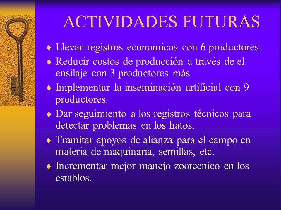 ACTIVIDADES FUTURAS Llevar registros economicos con 6 productores. Reducir costos de producción a través de el ensilaje con 3 productores más. Impleme
