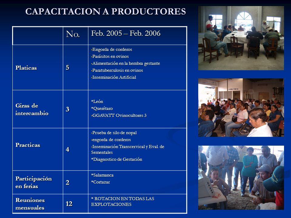AVANCES COMO GGAVATT Comunicación y apoyo mutuo entre todos los productores Comunicación y apoyo mutuo entre todos los productores Asistencia del 95%
