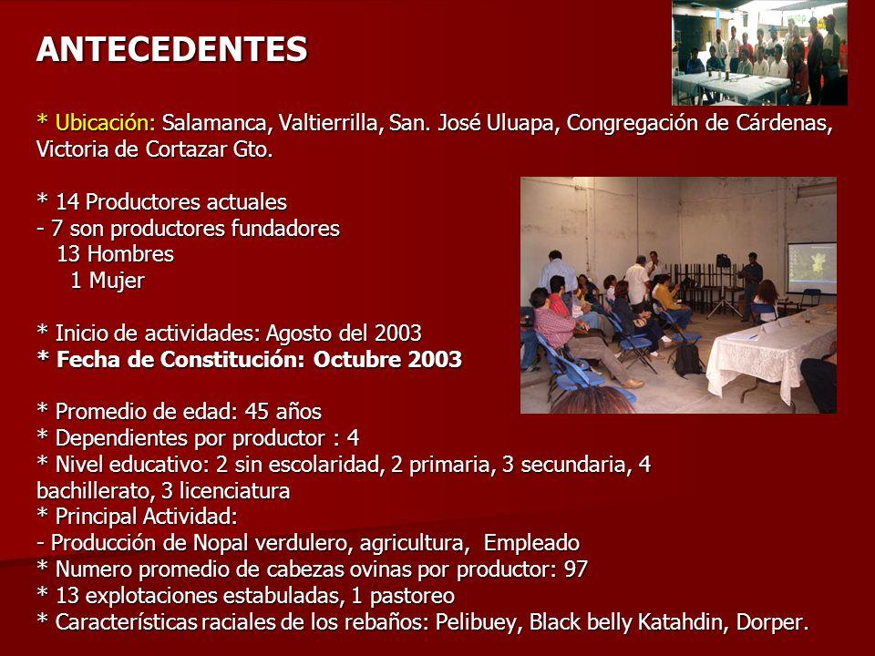 ANTECEDENTES * Ubicación: Salamanca, Valtierrilla, San.