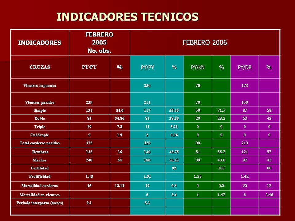INVENTARIO GANADERO AGOSTO 2003 FEBRERO 2005 FEBRERO 2006 Borregas376435730 Primalas110235231 Sementales152018 Corderos167470385 TOTAL CABEZAS 6681160