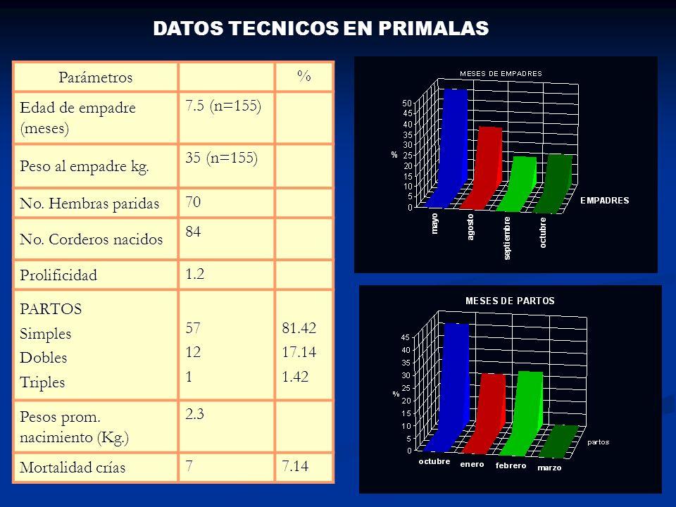 INDICADORES TECNICOS CRIANZA INDICADORESFEBRERO2005 No. obs. FEBRERO 2006 CRUZASPY/PY No. Obs. PY/PYNo.Obs.PY/KNNo.Obs.PY/DR Peso promedio al nac. Kg.