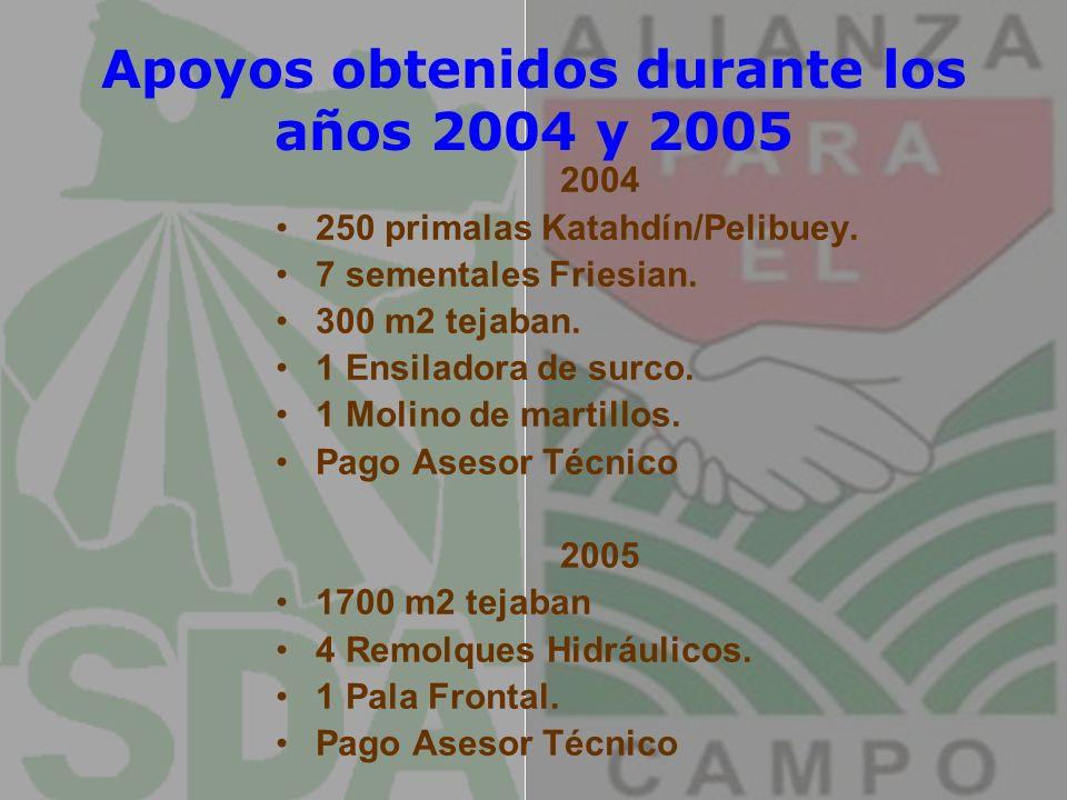 Apoyos obtenidos durante los años 2004 y 2005 2004 250 primalas Katahdín/Pelibuey. 7 sementales Friesian. 300 m2 tejaban. 1 Ensiladora de surco. 1 Mol