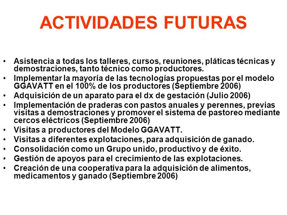 ACTIVIDADES FUTURAS Asistencia a todas los talleres, cursos, reuniones, pláticas técnicas y demostraciones, tanto técnico como productores. Implementa
