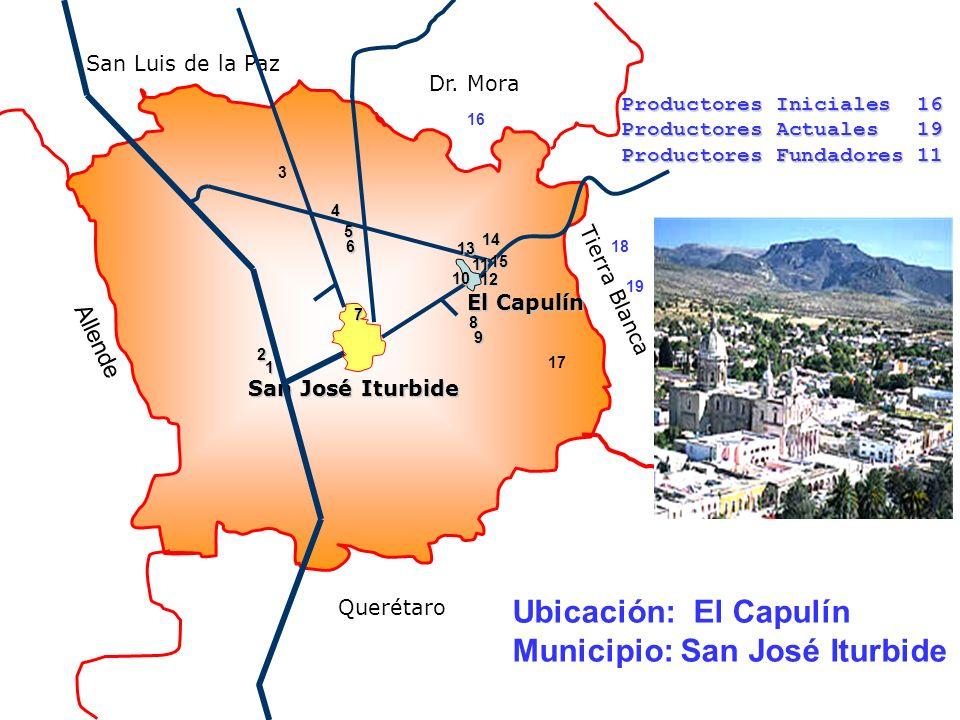 Tierra Blanca Querétaro Dr. Mora San Luis de la Paz San José Iturbide El Capulín Allende 1 2 3 4 5 6 7 8 9 10 11 12 13 14 15 16 17 18 19 Productores I