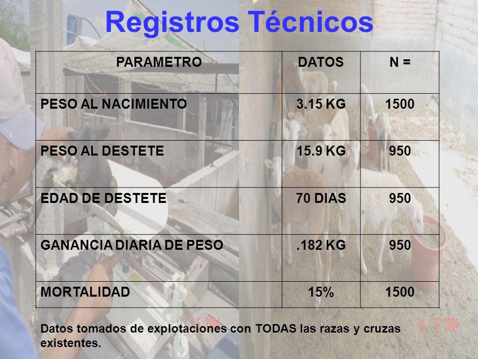 Registros Técnicos PARAMETRODATOSN = PESO AL NACIMIENTO3.15 KG1500 PESO AL DESTETE15.9 KG950 EDAD DE DESTETE70 DIAS950 GANANCIA DIARIA DE PESO.182 KG9