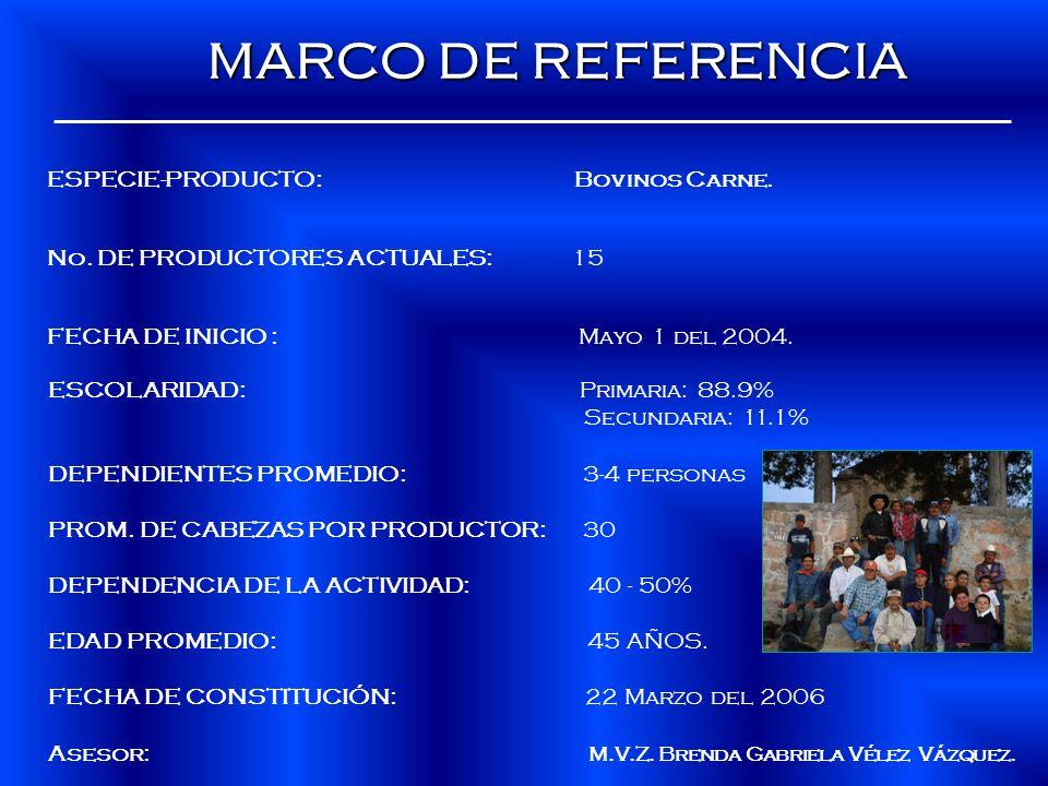 ESPECIE-PRODUCTO: Bovinos Carne. No. DE PRODUCTORES ACTUALES: 15 FECHA DE INICIO : Mayo 1 del 2004. MARCO DE REFERENCIA MARCO DE REFERENCIA ESCOLARIDA