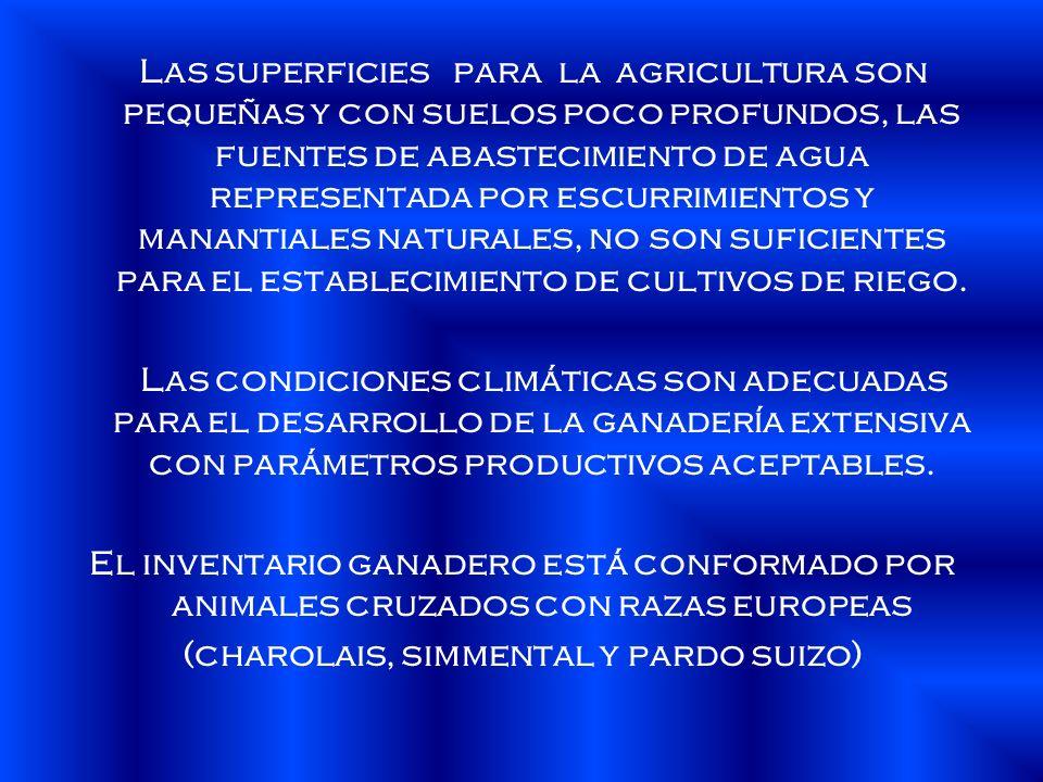 Las superficies para la agricultura son pequeñas y con suelos poco profundos, las fuentes de abastecimiento de agua representada por escurrimientos y manantiales naturales, no son suficientes para el establecimiento de cultivos de riego.