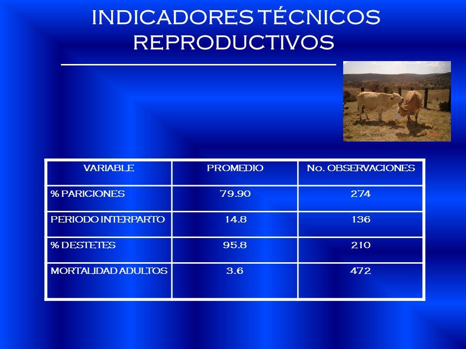 INDICADORES TÉCNICOS REPRODUCTIVOS VARIABLEPROMEDIONo. OBSERVACIONES % PARICIONES79.90274 PERIODO INTERPARTO14.8136 % DESTETES95.8210 MORTALIDAD ADULT