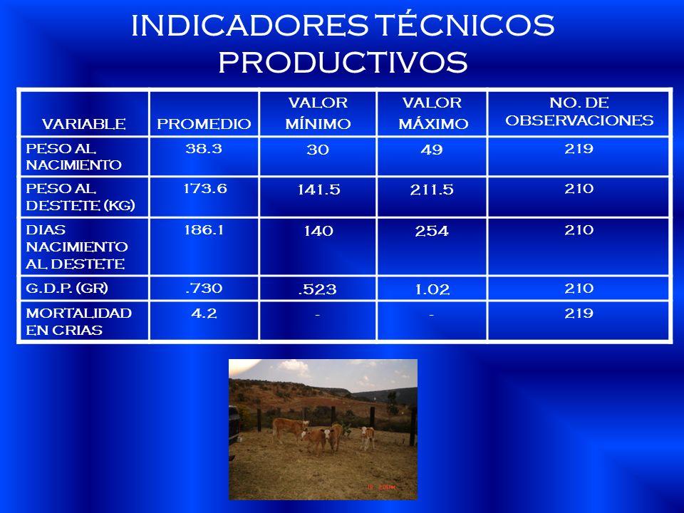 INDICADORES TÉCNICOS PRODUCTIVOS VARIABLEPROMEDIO VALOR MÍNIMO VALOR MÁXIMO NO. DE OBSERVACIONES PESO AL NACIMIENTO 38.3 3049 219 PESO AL DESTETE (KG)