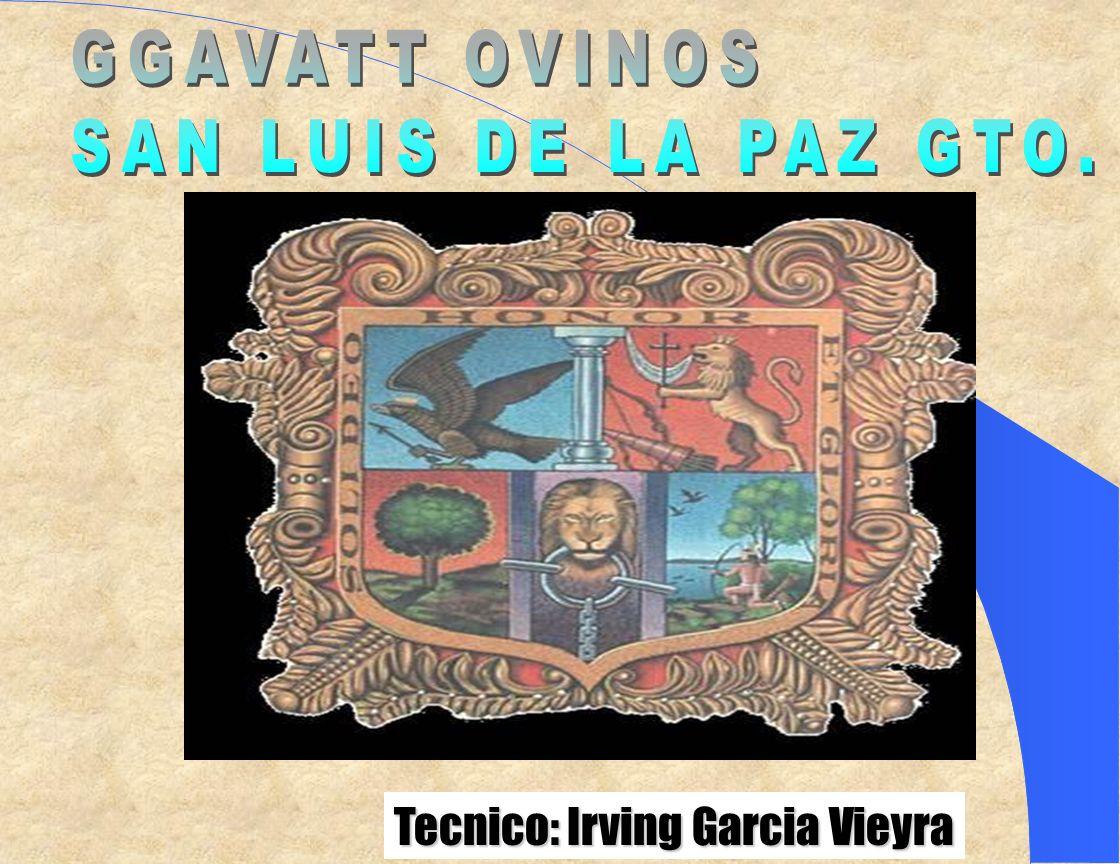 Tecnico: Irving Garcia Vieyra