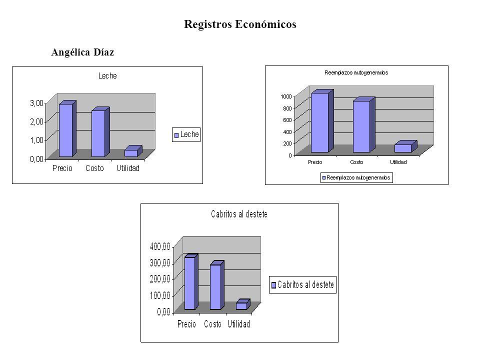 Registros Económicos Norma Rosas