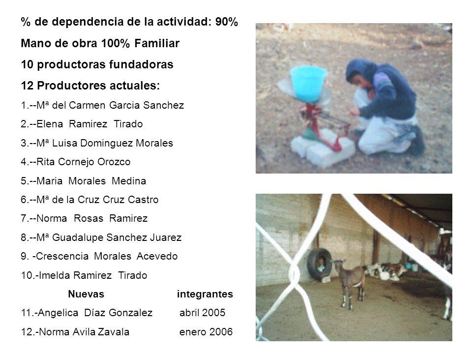 Productoras de Pantaleon Inicio de actividades como GGAVATT: 25 Junio del 2002 Fecha de constitución: 2 DE OCTUBRE 2002 Fecha de inicio de actividades