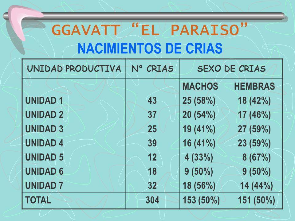 GGAVATT EL PARAISO NACIMIENTOS DE CRIAS UNIDAD PRODUCTIVAN° CRIASSEXO DE CRIAS UNIDAD 1 UNIDAD 2 UNIDAD 3 UNIDAD 4 UNIDAD 5 UNIDAD 6 UNIDAD 7 43 37 25