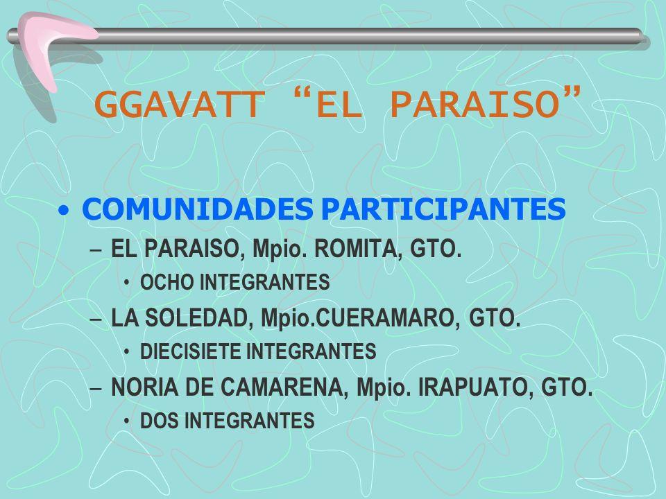 GGAVATT EL PARAISO EL PARAISO –Se localiza al suroeste del municipio de Romita –Es la comunidad más alejada de la cabecera municipal, a 44 km de ésta (35 km de carretera más 9 km de terracería).