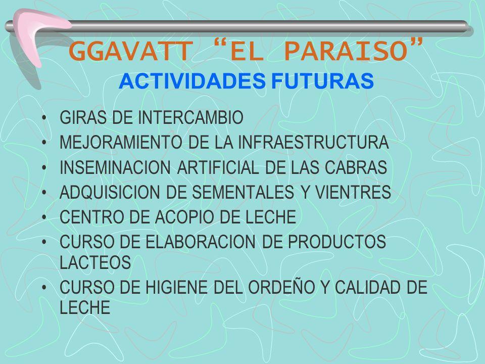GGAVATT EL PARAISO ACTIVIDADES FUTURAS GIRAS DE INTERCAMBIO MEJORAMIENTO DE LA INFRAESTRUCTURA INSEMINACION ARTIFICIAL DE LAS CABRAS ADQUISICION DE SE