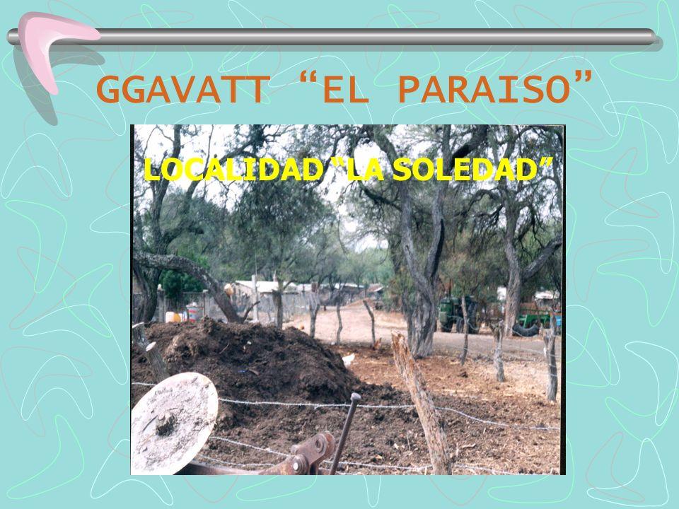 GGAVATT EL PARAISO PRACTICAS TECNOLOGICAS