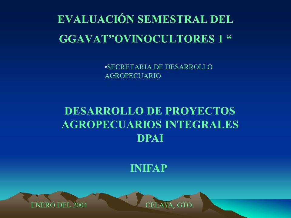 EVALUACIÓN SEMESTRAL DEL GGAVATOVINOCULTORES 1 SECRETARIA DE DESARROLLO AGROPECUARIO DESARROLLO DE PROYECTOS AGROPECUARIOS INTEGRALES DPAI INIFAP ENER