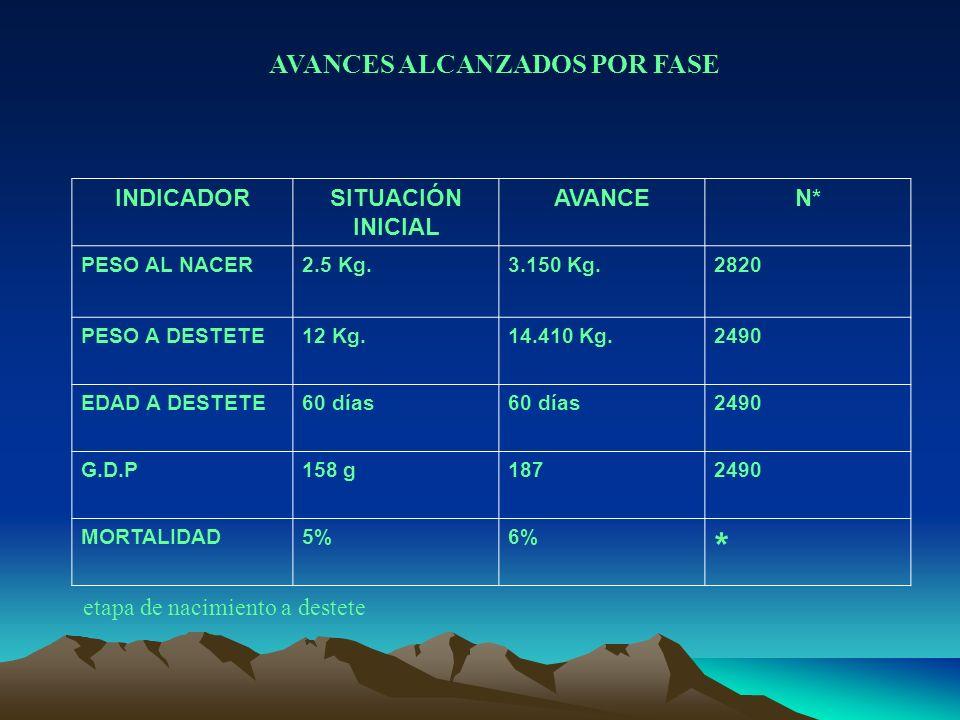 AVANCES ALCANZADOS POR FASE INDICADORSITUACIÓN INICIAL AVANCEN* PESO AL NACER2.5 Kg.3.150 Kg.2820 PESO A DESTETE12 Kg.14.410 Kg.2490 EDAD A DESTETE60