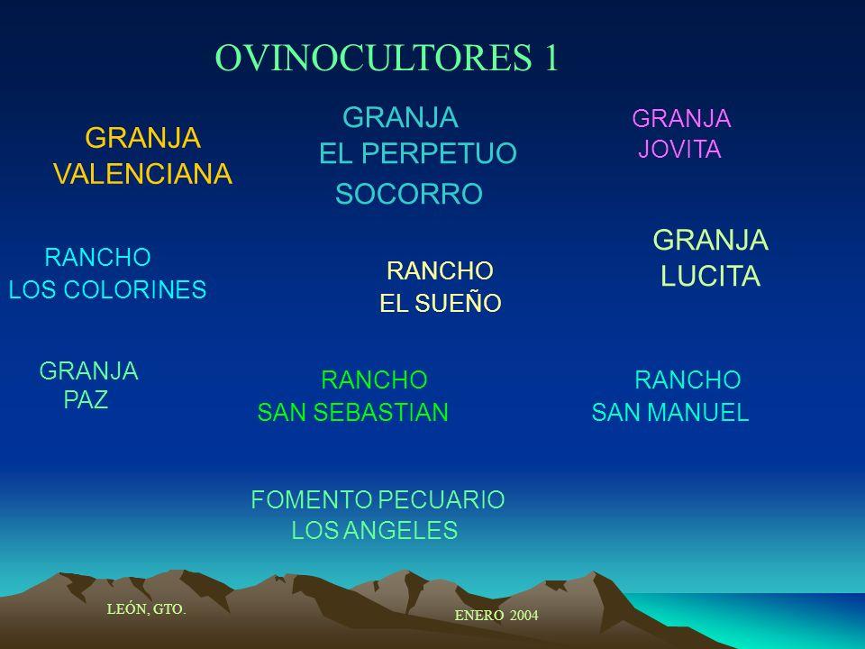 OVINOCULTORES 1 LEÓN, GTO. ENERO 2004 GRANJA VALENCIANA RANCHO LOS COLORINES GRANJA PAZ GRANJA EL PERPETUO SOCORRO RANCHO EL SUEÑO FOMENTO PECUARIO LO