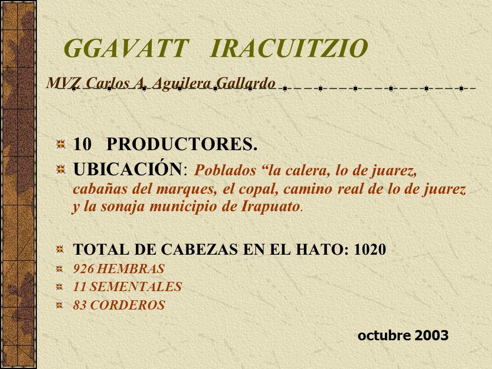 GGAVATT IRACUITZIO 10 PRODUCTORES.