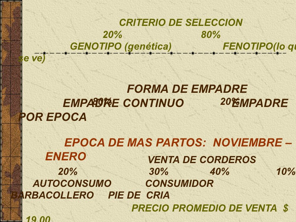 TENENCIA DE LA TIERRA 60% 10% 30% PARTICULAR EJIDAL RENTADA OCUPACIÓN APARTE DE LA UNIDAD DE PRODUCCIÓN 30% 20% 30% 20% ASALARIADO EVENTUAL NEGOCIO PA