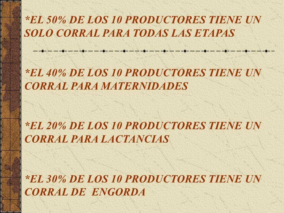 *EL 50% DE LOS 10 PRODUCTORES TIENE UN SOLO CORRAL PARA TODAS LAS ETAPAS *EL 40% DE LOS 10 PRODUCTORES TIENE UN CORRAL PARA MATERNIDADES *EL 20% DE LO