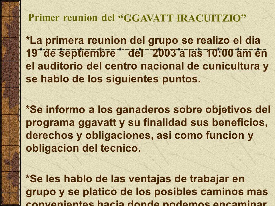 Primer reunion del GGAVATT IRACUITZIO *La primera reunion del grupo se realizo el dia 19 de septiembre del 2003 a las 10:00 am en el auditorio del centro nacional de cunicultura y se hablo de los siguientes puntos.