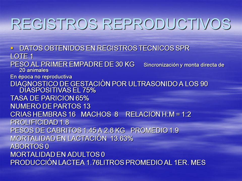 DATOS OBTENIDOS EN REGISTROS TECNICOS SPR DATOS OBTENIDOS EN REGISTROS TECNICOS SPR LOTE 1 PESO AL PRIMER EMPADRE DE 30 KG Sincronización y monta dire