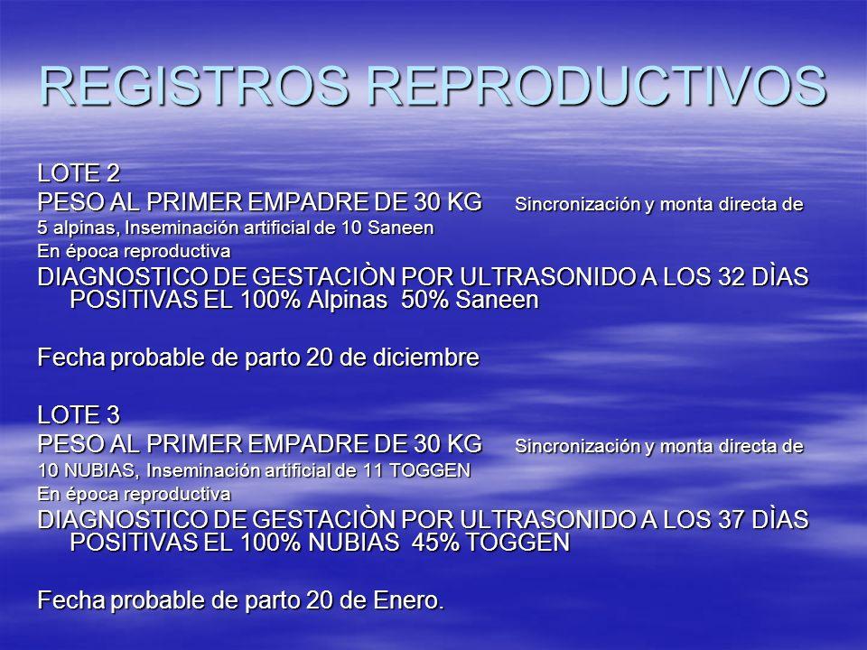 LOTE 2 PESO AL PRIMER EMPADRE DE 30 KG Sincronización y monta directa de 5 alpinas, Inseminación artificial de 10 Saneen En época reproductiva DIAGNOS
