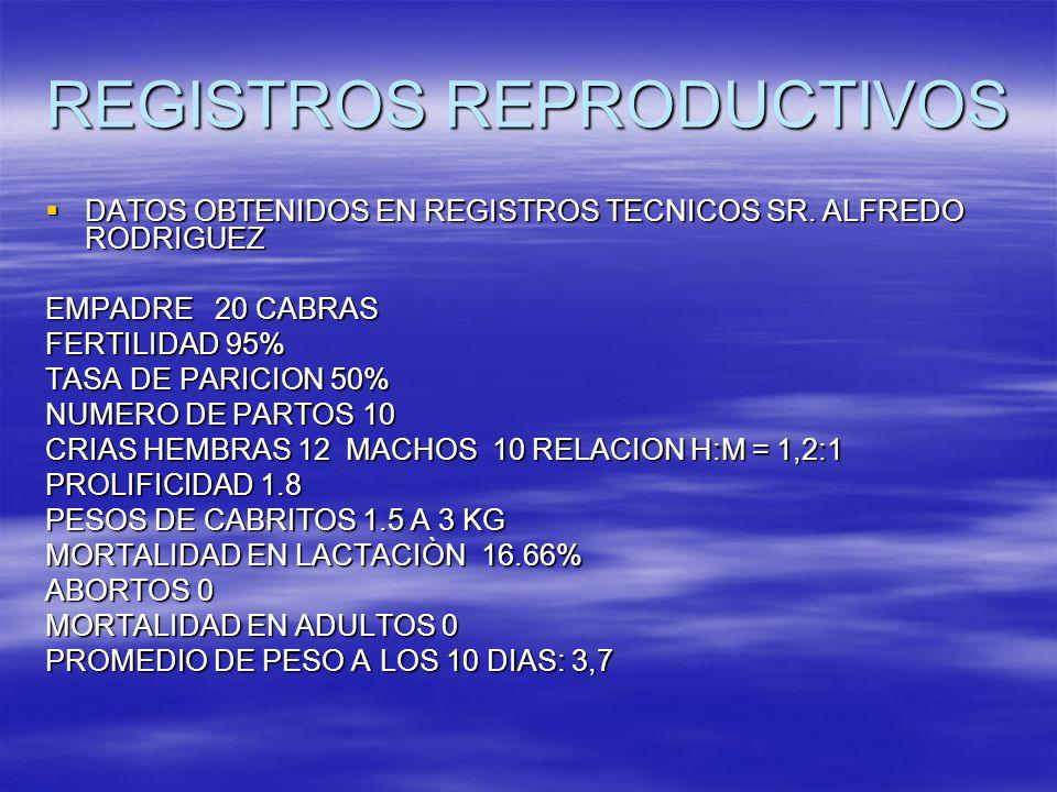 REGISTROS REPRODUCTIVOS DATOS OBTENIDOS EN REGISTROS TECNICOS SR. ALFREDO RODRIGUEZ DATOS OBTENIDOS EN REGISTROS TECNICOS SR. ALFREDO RODRIGUEZ EMPADR