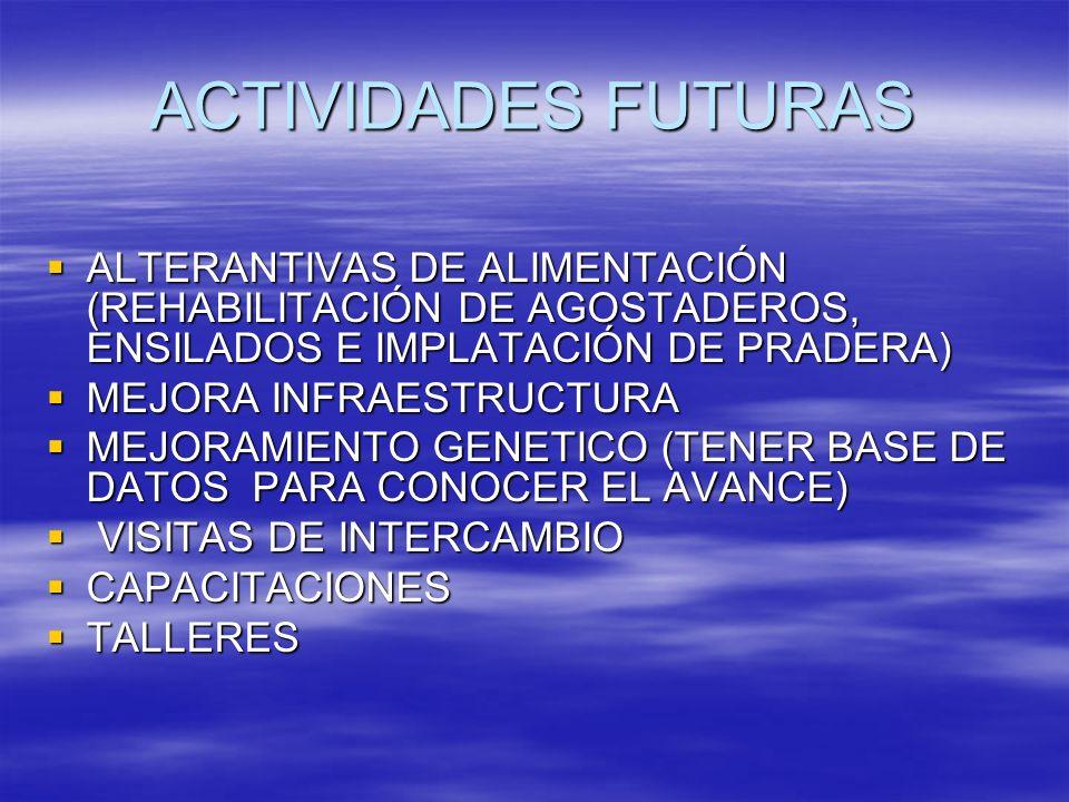 ACTIVIDADES FUTURAS ALTERANTIVAS DE ALIMENTACIÓN (REHABILITACIÓN DE AGOSTADEROS, ENSILADOS E IMPLATACIÓN DE PRADERA) ALTERANTIVAS DE ALIMENTACIÓN (REH