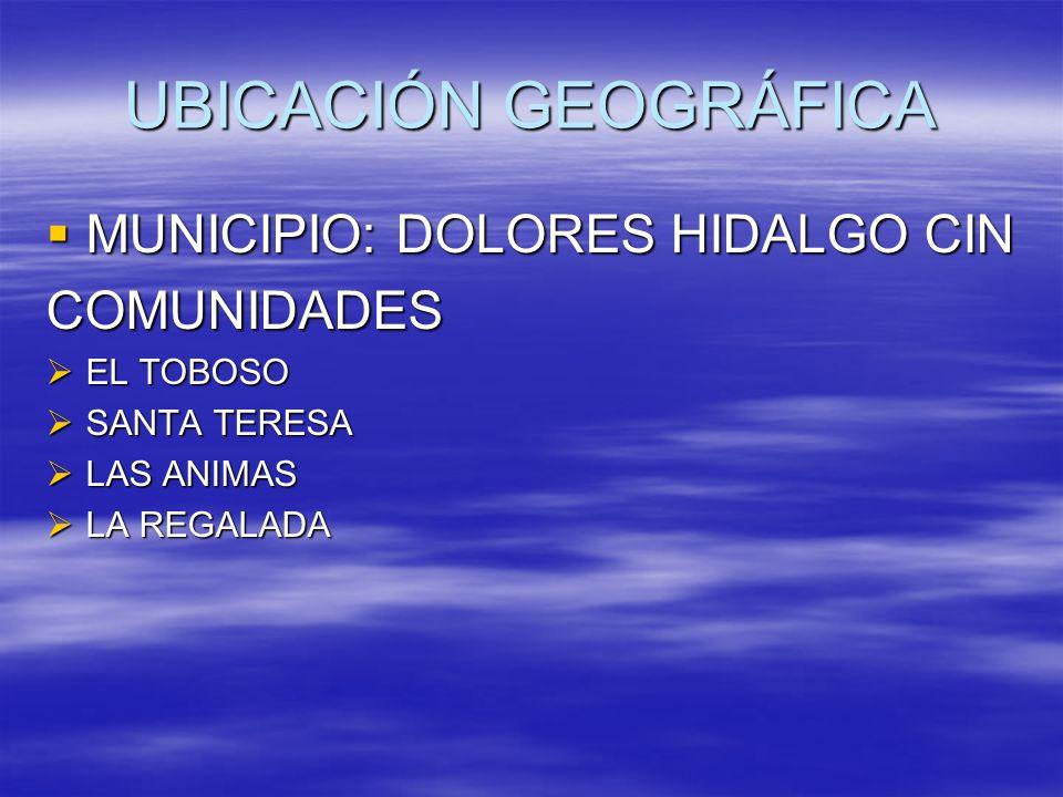 UBICACIÓN GEOGRÁFICA MUNICIPIO: DOLORES HIDALGO CIN MUNICIPIO: DOLORES HIDALGO CINCOMUNIDADES EL TOBOSO EL TOBOSO SANTA TERESA SANTA TERESA LAS ANIMAS
