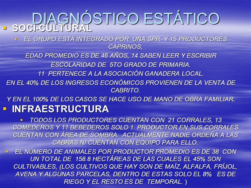DIAGNÓSTICO ESTÁTICO SOCI-CULTURAL SOCI-CULTURAL EL GRUPO ESTÁ INTEGRADO POR UNA SPR Y 15 PRODUCTORES CAPRINOS, EL GRUPO ESTÁ INTEGRADO POR UNA SPR Y