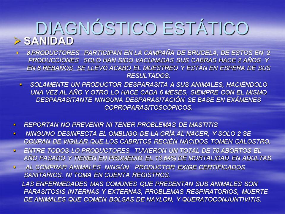 DIAGNÓSTICO ESTÁTICO SANIDAD SANIDAD 8 PRODUCTORES PARTICIPAN EN LA CAMPAÑA DE BRUCELA, DE ESTOS EN 2 PRODUCCIONES SOLO HAN SIDO VACUNADAS SUS CABRAS