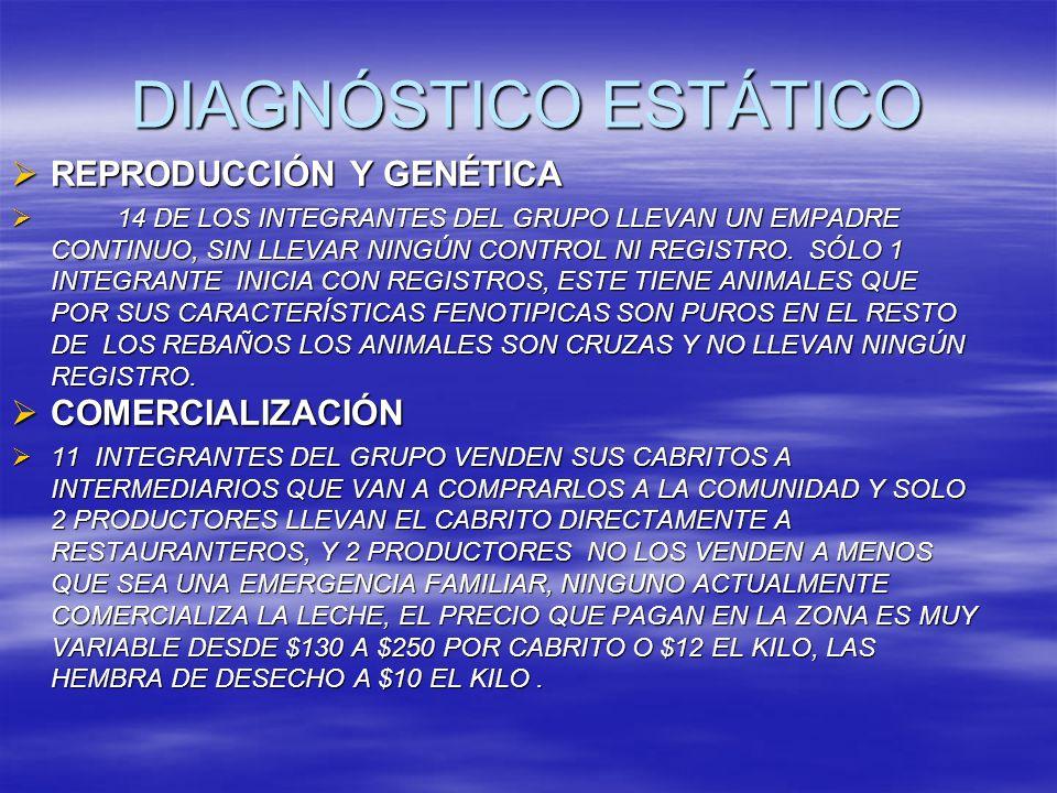 DIAGNÓSTICO ESTÁTICO REPRODUCCIÓN Y GENÉTICA REPRODUCCIÓN Y GENÉTICA 14 DE LOS INTEGRANTES DEL GRUPO LLEVAN UN EMPADRE CONTINUO, SIN LLEVAR NINGÚN CON