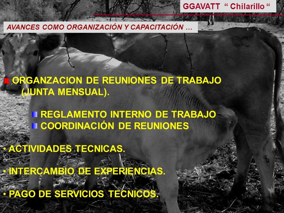 ORGANZACION DE REUNIONES DE TRABAJO (JUNTA MENSUAL). REGLAMENTO INTERNO DE TRABAJO COORDINACIÓN DE REUNIONES ACTIVIDADES TECNICAS. INTERCAMBIO DE EXPE