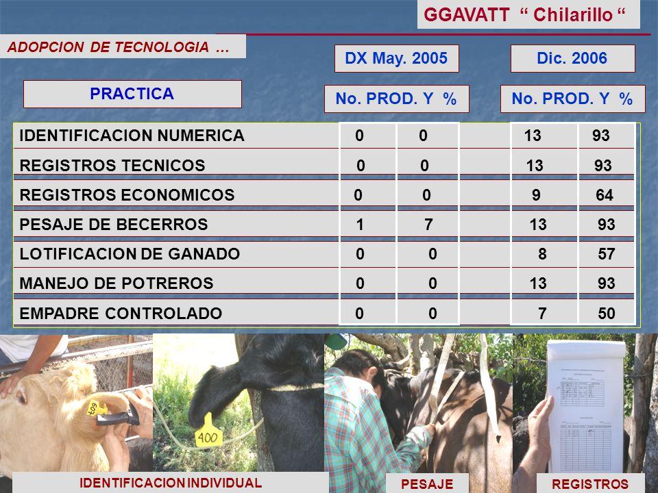 ADOPCION DE TECNOLOGIA … No. PROD. Y % DX May. 2005 PRACTICA No. PROD. Y % Dic. 2006 IDENTIFICACION NUMERICA 0 0 13 93 REGISTROS TECNICOS 0 0 13 93 RE