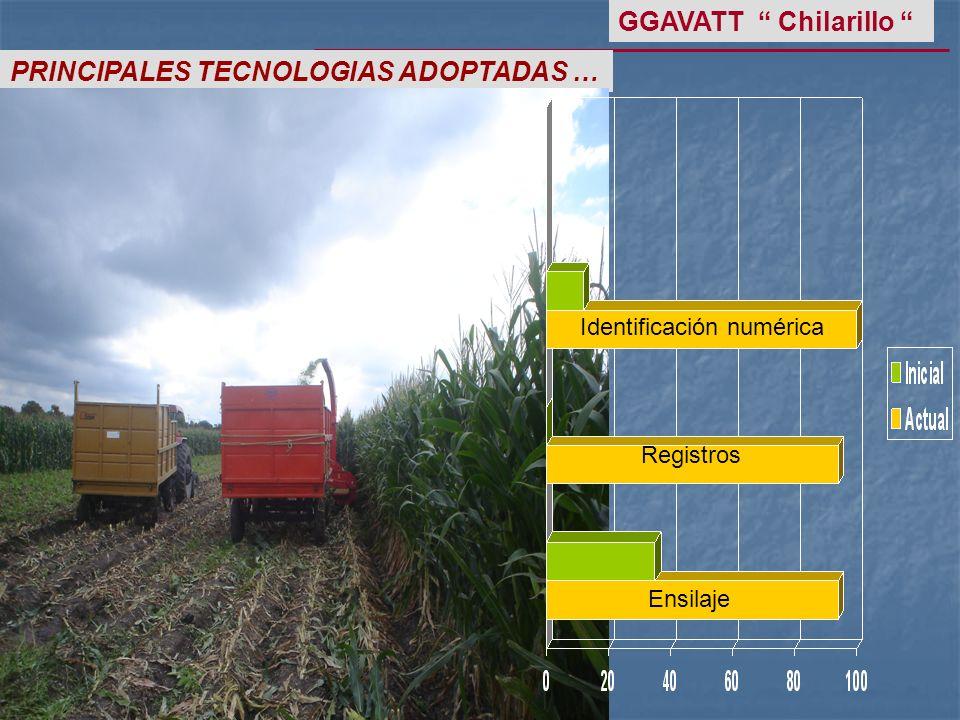PRINCIPALES TECNOLOGIAS ADOPTADAS … GGAVATT Chilarillo Identificación numérica Registros Ensilaje
