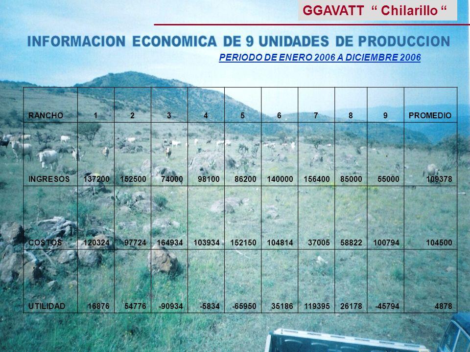 PERIODO DE ENERO 2006 A DICIEMBRE 2006 GGAVATT Chilarillo RANCHO123456789PROMEDIO INGRESOS1372001525007400098100862001400001564008500055000109378 COST