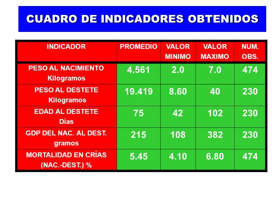 CUADRO DE INDICADORES OBTENIDOS INDICADORPROMEDIOVALOR MINIMO VALOR MAXIMO NUM.