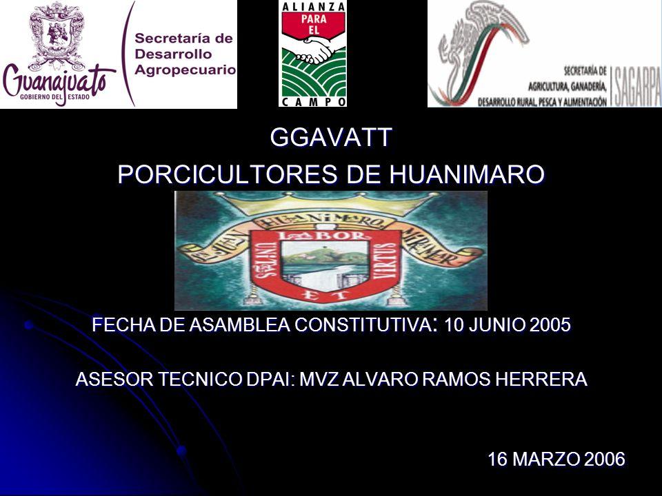 GGAVATT PORCICULTORES DE HUANIMARO FECHA DE ASAMBLEA CONSTITUTIVA : 10 JUNIO 2005 ASESOR TECNICO DPAI: MVZ ALVARO RAMOS HERRERA 16 MARZO 2006 16 MARZO