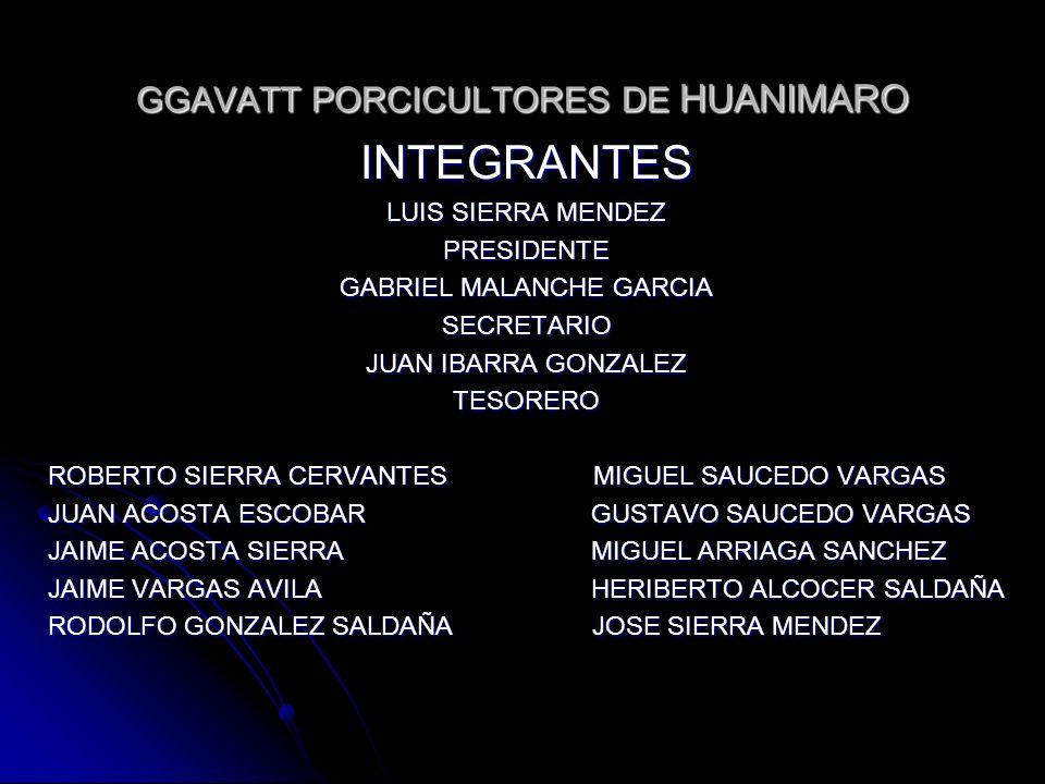 GGAVATT PORCICULTORES DE HUANIMARO INTEGRANTES LUIS SIERRA MENDEZ PRESIDENTE GABRIEL MALANCHE GARCIA SECRETARIO JUAN IBARRA GONZALEZ TESORERO ROBERTO