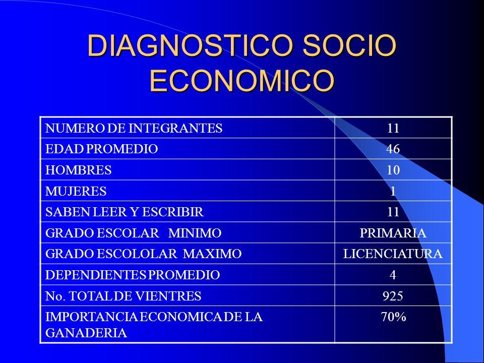 DIAGNOSTICO ESTATICO TECNOLOGIADX ESTATICO % DE USO REGISTROS TECNICOS872.7% REGISTROS ECONOMICOS00% SELECCIÓN DE PIE DE CRIA11100% DX DE GESTACION1090.8% CUIDADOS DE LA MADRE Y LECHON AL PARTO872.7% CUIDADOS EN LACTANCIA872.7% IDENTIFICACION981.8% PESAJE DE LECHON EN GENERAL00% DETERMINACION DE RACIONES POR ETAPA11100% DESPARASITACION Y VACUNACION981.8% LIMPIEZA Y DESINFECCION DE INSTALACIONES981.8% CONTROL DE FAUNA NOCIVA545.4% CONTROL DE TEMPERATURA981.8% INSEMINACION ARTIFICIAL981.8%