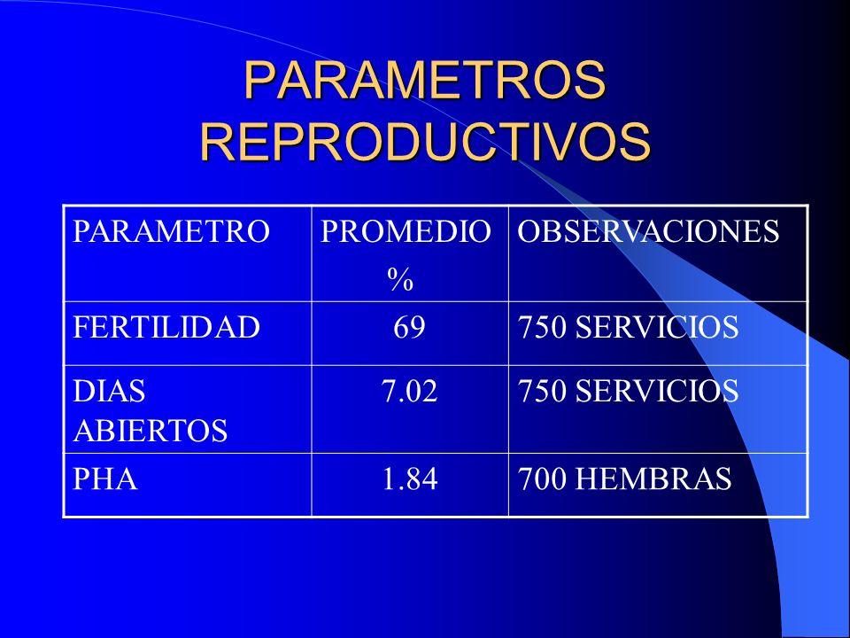 PARAMETROS EN MATERNIDAD PARAMETROPROMEDIOOBSERVACIONES L.N.V9.2989 PARTOS L.M0.7989 PARTOS % MOMIAS4.8989 PARTOS L.N.T10.49989 PARTOS PESO AL NACER1.71453 LECHONES