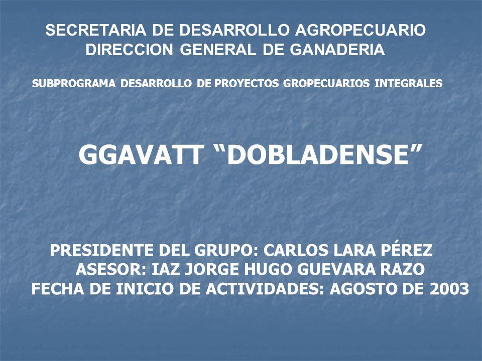 SECRETARIA DE DESARROLLO AGROPECUARIO DIRECCION GENERAL DE GANADERIA SUBPROGRAMA DESARROLLO DE PROYECTOS GROPECUARIOS INTEGRALES PRESIDENTE DEL GRUPO: CARLOS LARA PÉREZ ASESOR: IAZ JORGE HUGO GUEVARA RAZO FECHA DE INICIO DE ACTIVIDADES: AGOSTO DE 2003 GGAVATT DOBLADENSE