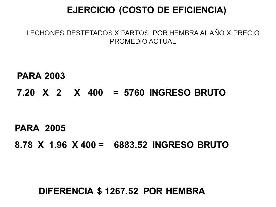 EJERCICIO (COSTO DE EFICIENCIA) LECHONES DESTETADOS X PARTOS POR HEMBRA AL AÑO X PRECIO PROMEDIO ACTUAL PARA 2003 7.20 X 2 X 400 = 5760 INGRESO BRUTO