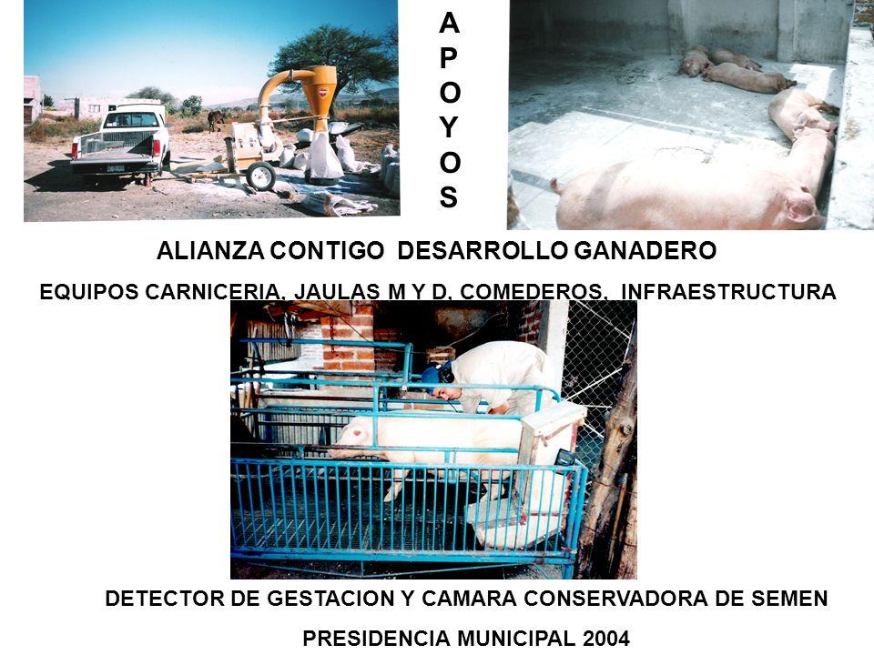 ALIANZA CONTIGO DESARROLLO GANADERO EQUIPOS CARNICERIA, JAULAS M Y D, COMEDEROS, INFRAESTRUCTURA DETECTOR DE GESTACION Y CAMARA CONSERVADORA DE SEMEN