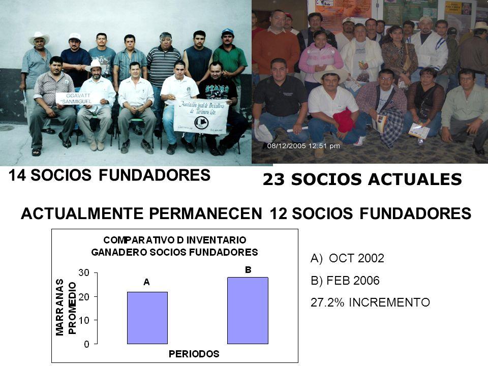 14 SOCIOS FUNDADORES 23 SOCIOS ACTUALES ACTUALMENTE PERMANECEN 12 SOCIOS FUNDADORES A)OCT 2002 B) FEB 2006 27.2% INCREMENTO