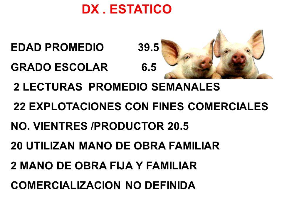 DX. ESTATICO EDAD PROMEDIO 39.5 GRADO ESCOLAR 6.5 2 LECTURAS PROMEDIO SEMANALES 22 EXPLOTACIONES CON FINES COMERCIALES NO. VIENTRES /PRODUCTOR 20.5 20